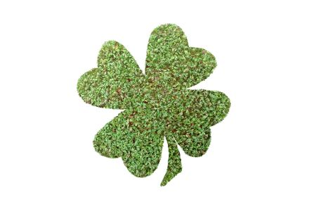 Four-leaf clover with superimposed green plant isolated on white photo