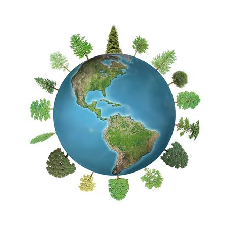 save tree: Coniferous and deciduous trees growing around the Earth globe isolated on white background Stock Photo