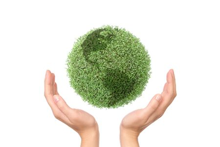 environmental protection: Green plant globe between two hands on white background - environmental protection concept Stock Photo