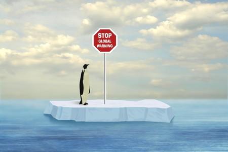 Penguin buscando detener el calentamiento global impulsada por firmar en floe flotando en la superficie del mar Artctic