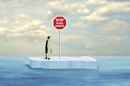Penguin looking at Stop Global Warming sign driven into floe floating on the Artctic sea surface