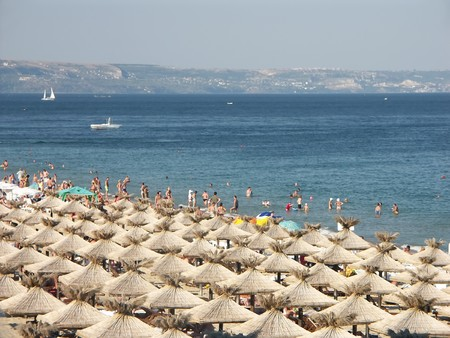 Golden Sands beach with rows of straw shade umbrellas in Bulgaria