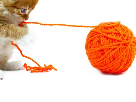 Gatito jugando con bolas de lana de color naranja sobre fondo blanco disparó Foto de archivo