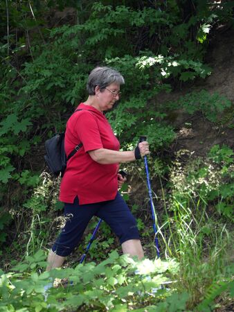 Senior woman hiking in the forest using walking poles