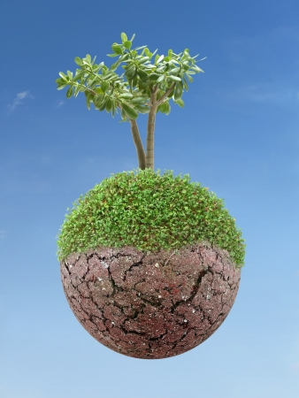 erosion: Single tree growing on small semi-green planet over blue sky