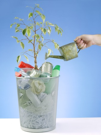 offshoot: Plantlet growing in trash bin full of domestic garbage being watered with water can over blue background