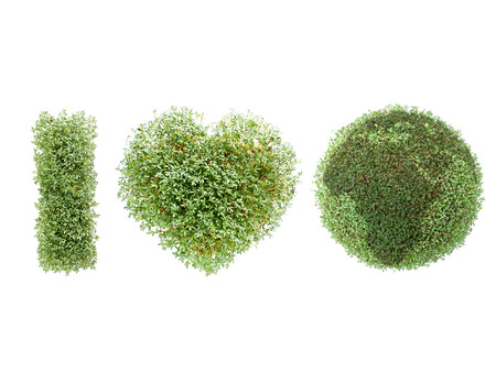 I love Earth acronym created from watercress-grown symbols over white background photo