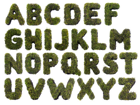 concepts alphabet: Latin alphabet letters made from grass on white