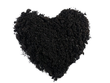 Heart shaped from soil on white background photo