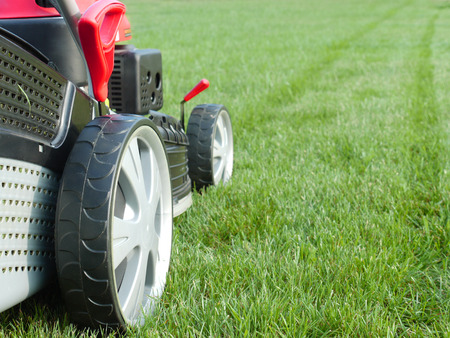 grass cutting: Closeup of grassmower mowing the grass