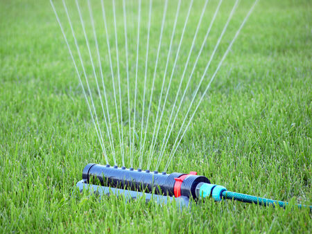 irrigated: Lawn being irrigated by sprinkler