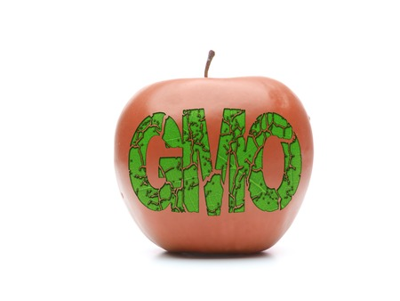 Red apple with GMO acronym shot on white photo