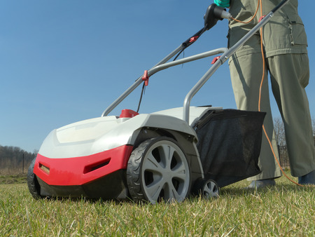 Female gardener scarifying her backyard lawn using electric scarifier