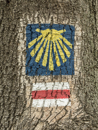 james: Sign of Saint James route painted on tree bark Stock Photo