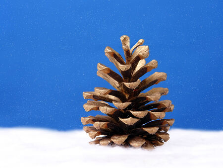 Golden pine cone against snowy sky