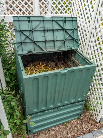 Green plastic compost bin full of organic and domestic food scraps photo