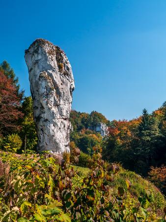 jura: Limestone rock formation called Bludgeon of Hercules or Maczuga Herkulesa, Pieskowa Skala in the area of Krakow-Czestochowa Upland, Poland Stock Photo