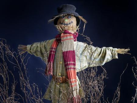 autumn scarecrow: Scarecrow on dark blue background Stock Photo