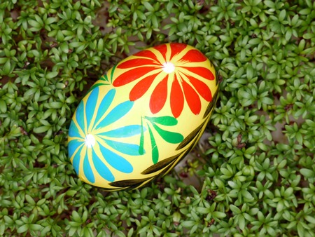 berros: Puesta de huevos de Pascua pintados en berro disparo desde arriba