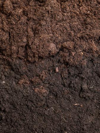 Cross-section of garden soil
