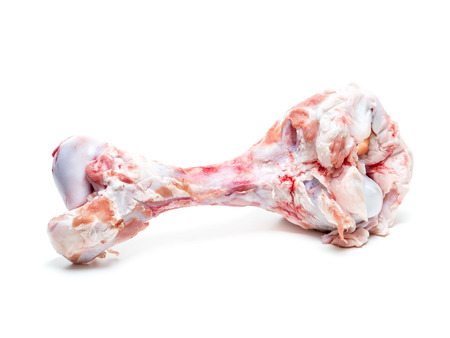 collarbone: Beef bone for chewing shot on white Stock Photo