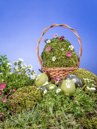 hillock: Easter wicker basket with giant moss-grown egg and spring flowers and painted egss in the grass over blue sky