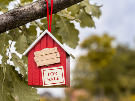 tree branch: Wooden red birdhouse hanging on tree branch with entry hole covered with planks and note FOR SALE attached to it