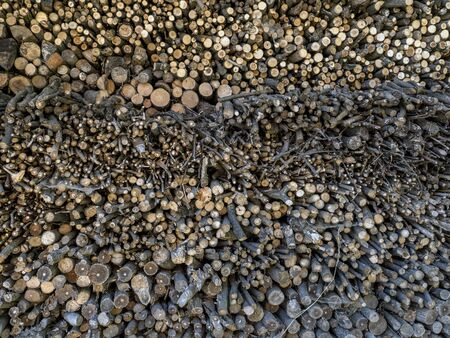 brushwood: Pile of stacked chopped firewood Stock Photo