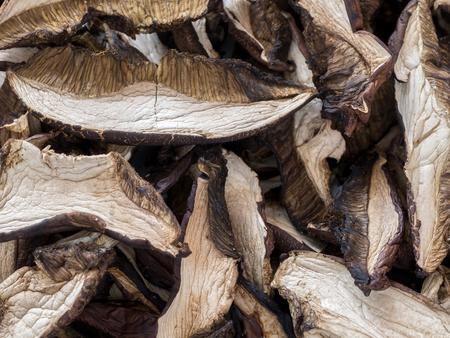 bolete: Closeup of dried bolete mushrooms