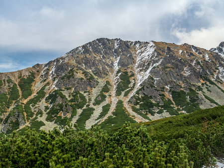 mugo: Mountain ridge in High Tatra, Poland
