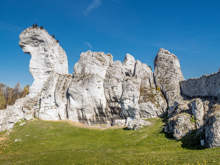 jura: Lime rock outlier formation one of many that can be found in the Krakow-Czestochowa Upland also known as Polish Jurasic Highland, Poland