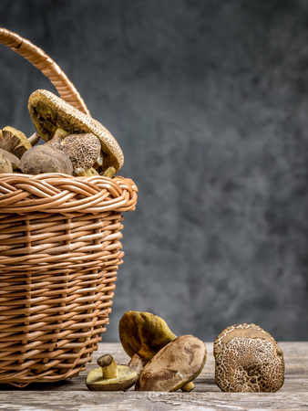 fungal: Wicker basket full of edible mushrooms on wooden table