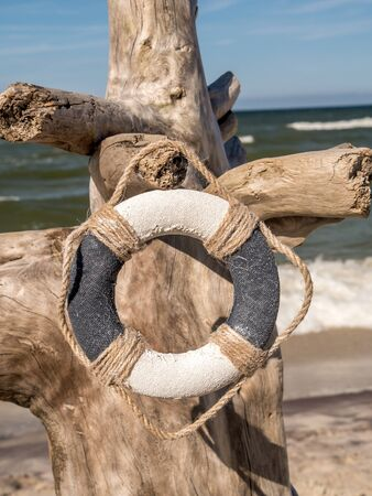 beach buoy: Life buoy hung on the dried tree trunk stuck into the beach Stock Photo
