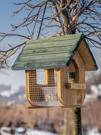 affixed: Wooden bird feeder with seed mix affixed to the tree