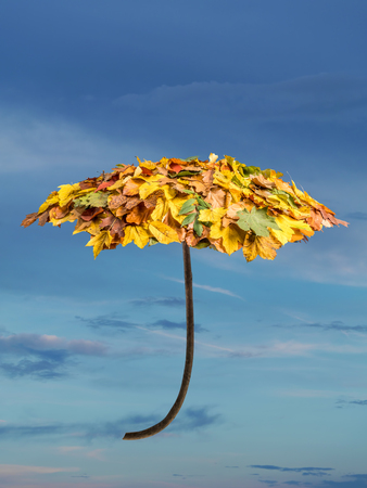 Umbrella covered with autumn leaves over cloudy sky