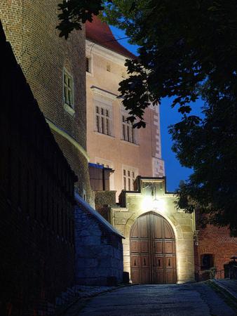 Royal Wawel Castle illuminated at night, Krakow - Poland