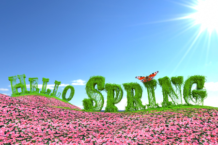 3D rendering of green Hello Spring text formed from ivy branches on pink flower meadow aganist bright sunny sky