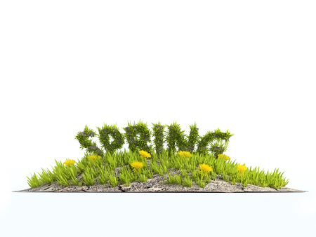 3D rendering of little grass island with yellow flowers and grass-covered Spring word on white background Stock Photo