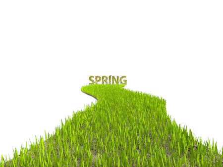 3D rendering of fresh green grass path leading to Spring word on white background Stock Photo