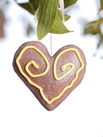 Mistletoe with brown gingerbread heart cake on white background Stock Photo