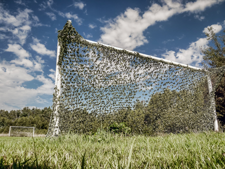 Abandoned rural soccer ball field with goals
