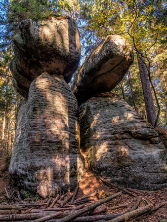 One of many unique sandstone rock formations that can be found on the Mushroom Rocks tourist trail in the Table Mountain National Park, Poland Stock Photo