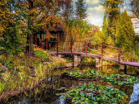 Beautiful garden with pond and wooden bridge