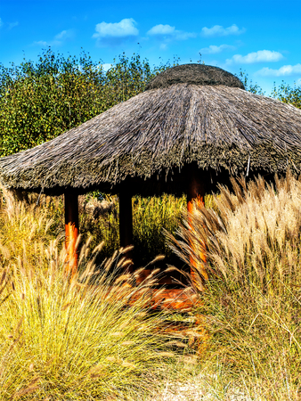 Thached summer house surrounded by silvergrass Stock Photo