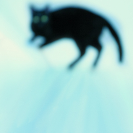 Defocused black cat with green big eyes  Abstract background Stock Photo