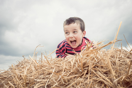 Boy calling from heap of hay