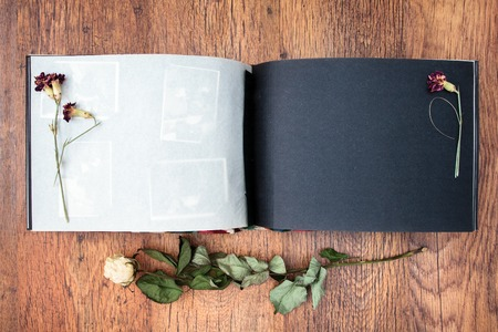no photo: Top view of open photo album book with withered rose next to this Stock Photo
