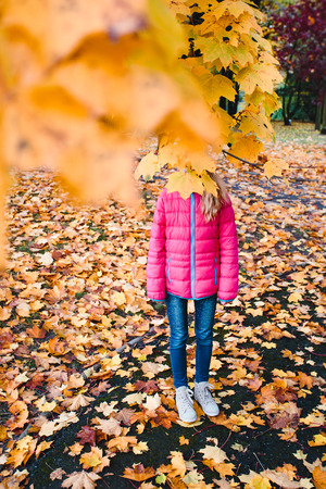 Girl hidden behind yellow autumn leaves in a park Stock Photo