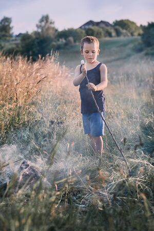 Little boy roasting marshmallow over a campfire on a meadow. Candid people, real moments, authentic situations Reklamní fotografie