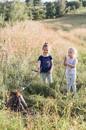 Little girls roasting marshmallows over a campfire on a meadow. Candid people, real moments, authentic situations Reklamní fotografie